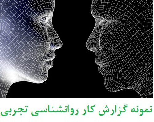 آزمایش یادگیری از راه کوشش و خطا لابیرنت - آزمایش ماز لابیرنت